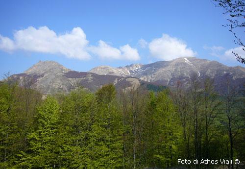 Alt: Gruppo Alpe Succisio